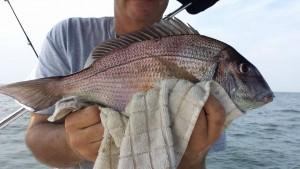 fishing0608312015