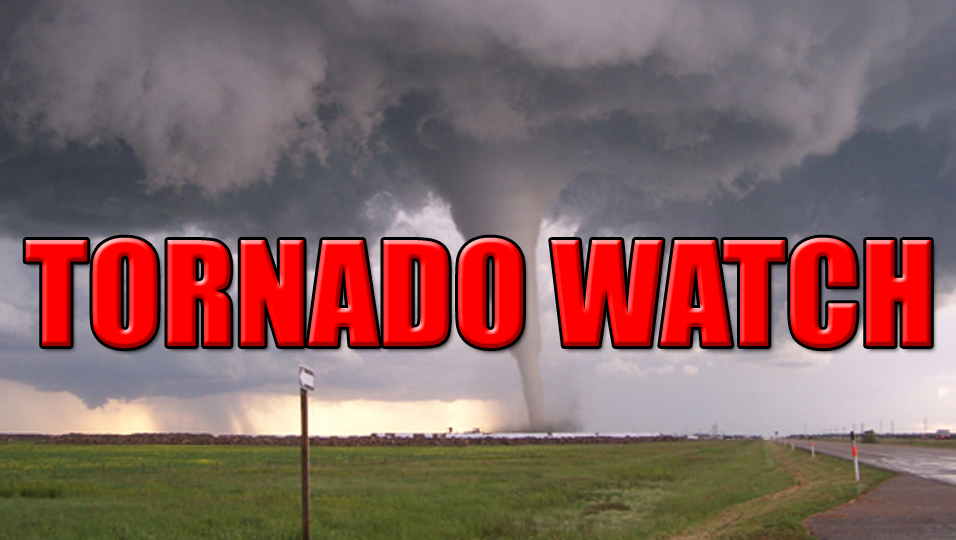 TORNADO WATCH OUTLINE UPDATE FOR WT 28 NWS STORM PREDICTION CENTER NORMAN OK 320 PM EST WED FEB 24 2016 TORNADO WATCH 28 IS IN EFFECT UNTIL 1100 PM EST FOR THE FOLLOWING LOCATIONS NJC001-005-007-009-011-015-021-033-250400- /O.NEW.KWNS.TO.A.0028.160224T2020Z-160225T0400Z/ NJ . NEW JERSEY COUNTIES INCLUDED ARE ATLANTIC BURLINGTON CAMDEN CAPE MAY CUMBERLAND GLOUCESTER MERCER SALEM