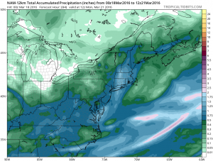 namprecip NAM Model Goes European
