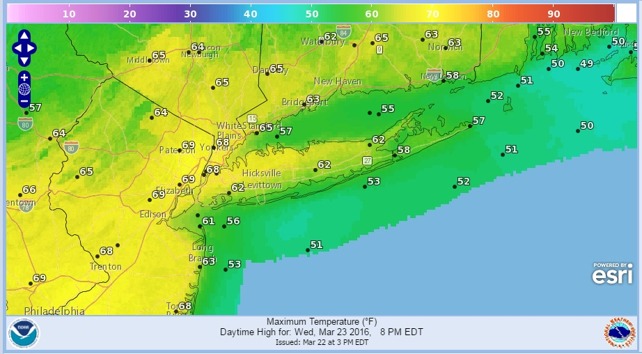 Springtime Warmth Wednesday