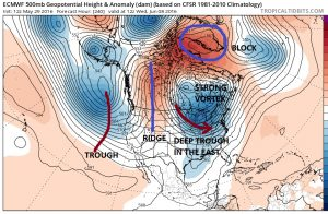 euro240 Long Range Active Cool Start to June