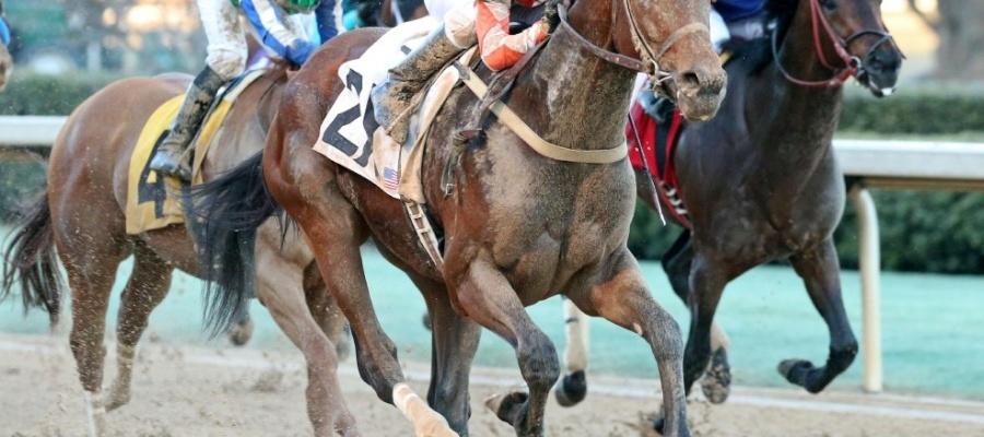Belmont Stakes Saturday