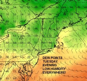 tuesday Beautiful Afternoon Low Humidity  Heatwave Begins Friday