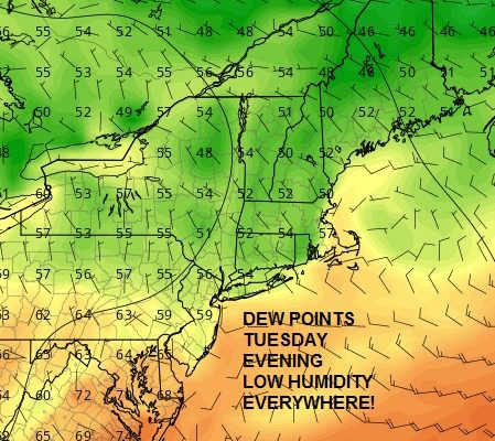Beautiful Afternoon Low Humidity Heatwave Begins Friday