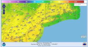 hot humid