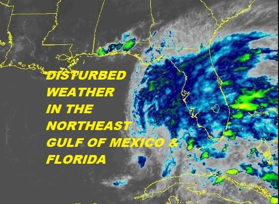 Disturbed Weather Across Florida Could Develop Next Few Days