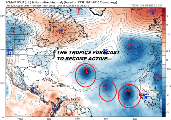 tropical depression 6 tropical storm florence