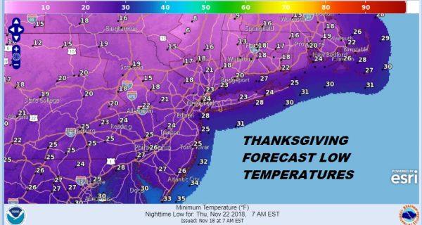 thanksgiving turkey cold