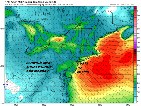 March Lion Roars Early Strong Winds Sunday Night Monday Gusts to 50 MPH