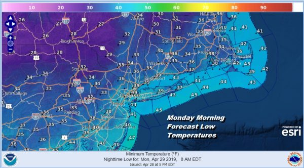 Monday Morning Forecast Low Temperatures