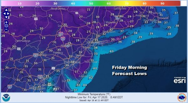 Freeze Warning Overnight Chilly Rain Late Friday into Saturday Morning